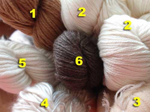 Was ist was? Wunderbare Wolle aus China!